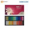 SIMBALION Soft Pastel SP- 48